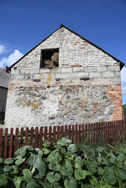 Kiełpiny 42 (gm. Lidzbark)