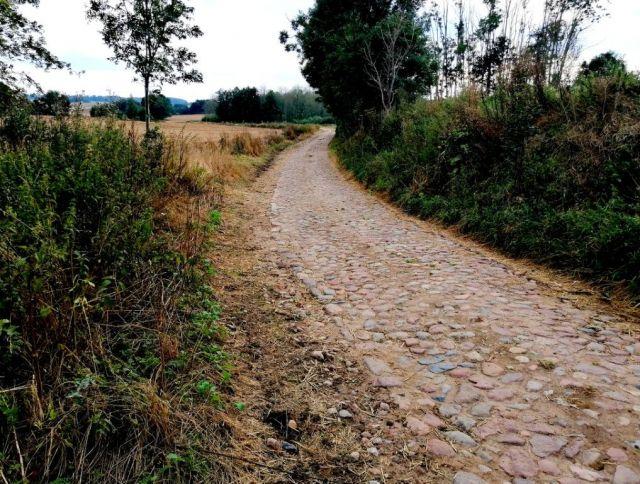 Droga brukowana Szczepakowo - Rumienica (gm. Lubawa)