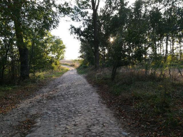 Droga brukowana Kuligi - Tuszewo (gm. Lubawa, gm. Grodziczno)